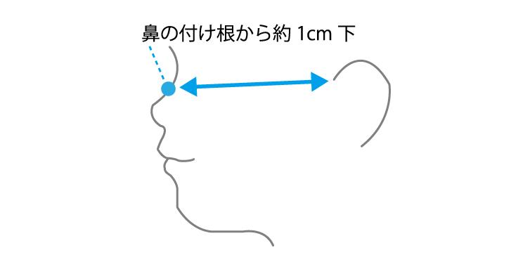 姫路麗プロ マスク